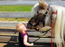 Kid e pony