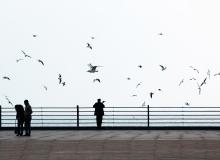 Baku. Rainy morning