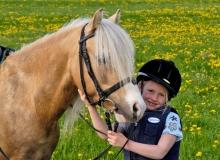 I piccoli cavalli per i bambini